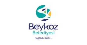 منطقة بيكوز اسطنبول